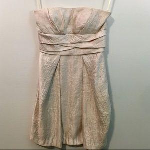 BCBG Champagne Strapless Dress